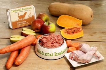 ração saudável e natural para cães