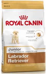 royal canin para labradores
