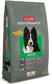 club performance para bull
