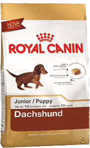 royal canin dachshund