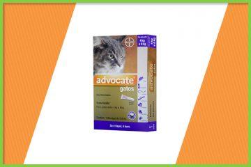 advocate bayer